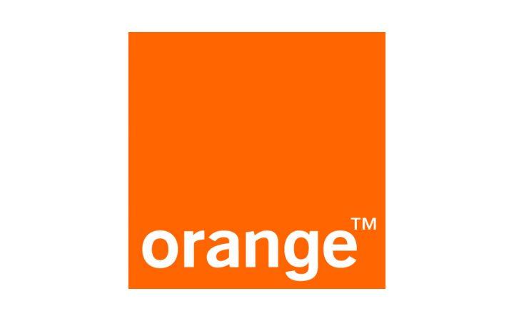 LOGO Orange z polem Pantone